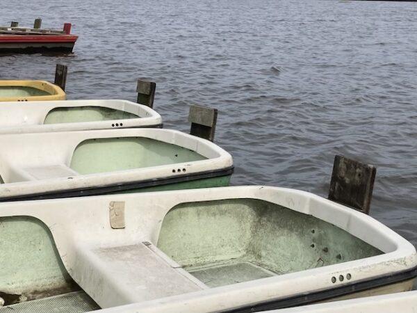 ボートラダー